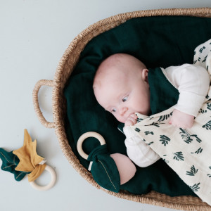 Babysvøb - 2-pak - Forest Floor